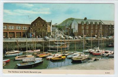THE HARBOUR AND NORTH BERWICK LAW: East Lothian postcard (C34062)