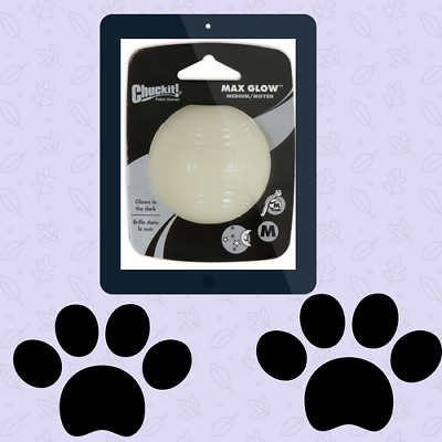 Chuckit Max Glow In the Dark Ball Light Play Fetch Ball Medium Dogs Rechargeable