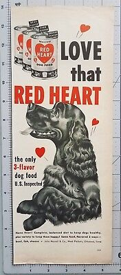 1952 Red Heart Canned Dog Food Brown Field Spaniel Vintage 1950s Print Ad