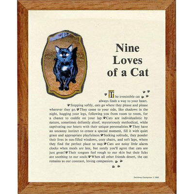 Nine Lives of a Cat Picture Frame