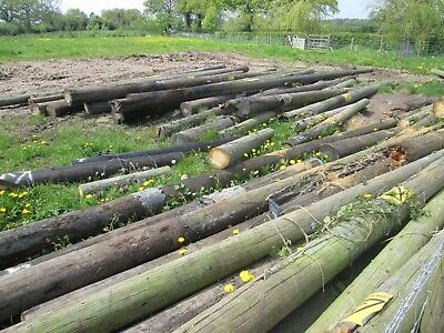 used telegraph poles ideal for shed building fencing etc 2nd quality