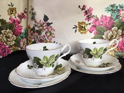 VINTAGE ROYAL ASCOT Bone China~*Green Leaves*~2 TRIOS Cup/Saucer/Tea Plate- Vgc