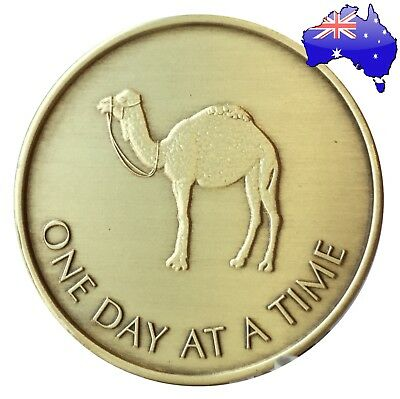 AA Alcoholics Anonymous Camel bronze sobriety coin token medallion NA Gift NEW