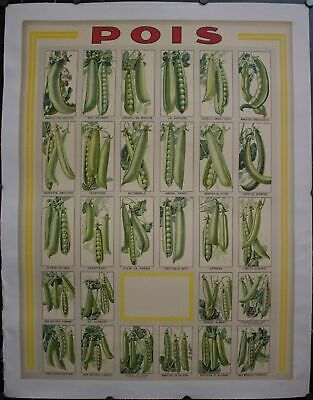 c. 1920 Pois French Pea Advertising Poster Vintage Original