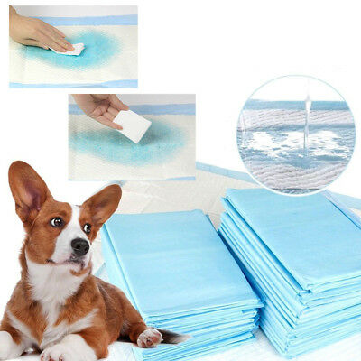 Thickening Pets Diapers Pet Indoor Toilet Training Pad Pads Absorbent Puppy Mat