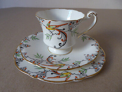 Paragon Star China. England. Trio. Bird of Paradise.  Mint