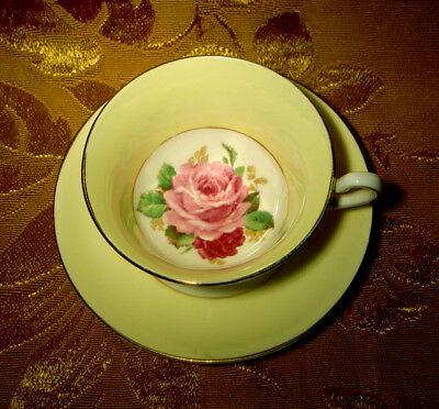 Rosina Cup & Saucer Pink Red Roses Yellow Gold Trim Made In England