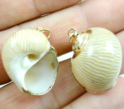 2PC Cute Gold rim ocean conch shell Pendant Beads necklace Jewelry Making #10 K1