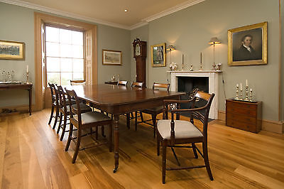 Set of 8 Regency Dining Chairs (NOT reproduction)