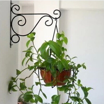 Iron Wall Hanging Bracket Art Plant Holder Hanger Hook Home Garden Decor Nice