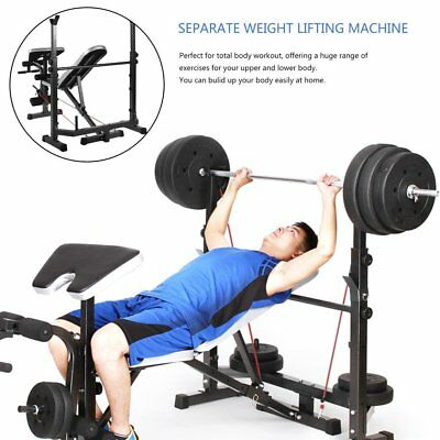 Weights Leg Curl Press Muscle Weight Bench Bodybuilding Exercise Equipment