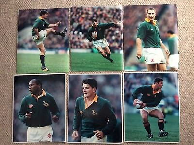 """6 x South Africa Rugby Players Sports Photographs. 8"""" x 10"""""""