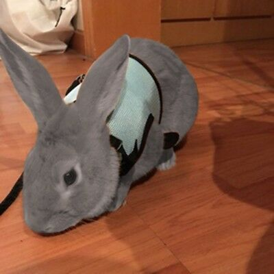 New Soft Harness With Elastic Leash For Rabbit Bunny Comfortable Pet Supply