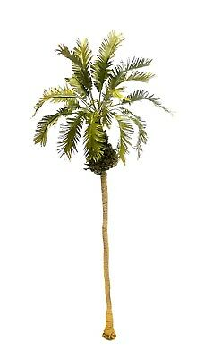 1/35 Scale Realistic Betel Palm Tree Mode 30 Cm. Height.  Tpv-096