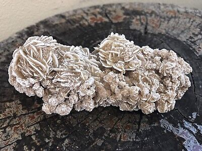 Large Desert Rose Gypsum Cluster from Mexico - 225 Grams (#AU033)