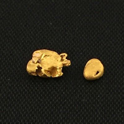 Gold nuggets x 2 , combined weight 0.55 grams (Australian natural)