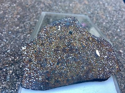 Meteorite Gao-Guenie H5 Polished Section Very Rare