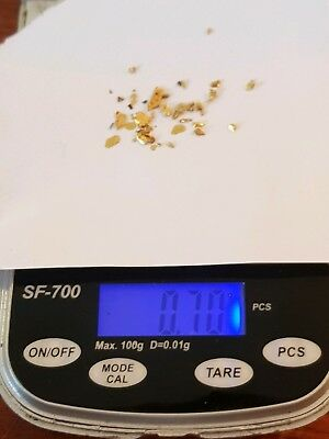 0.70g gold nuggets