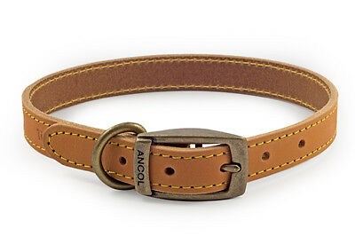 * Clearance* Ancol Timberwolf Leather Dog Collar (Mustard) Free Engraved Id Tag