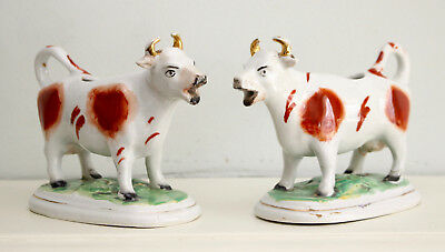 A Pair c19th Antique Victorian Staffordshire Cow Creamers