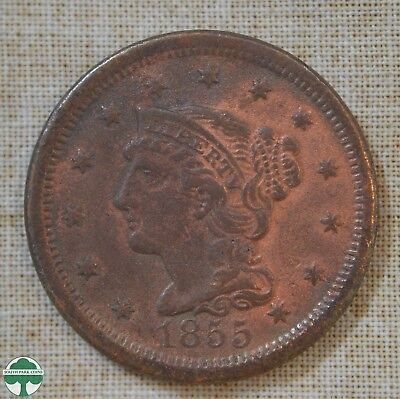 1855 Braided Hair Large Cent - Very Fine Details - Pitted