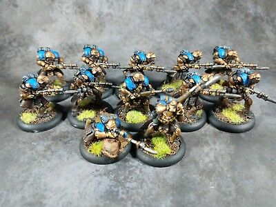 Warmachine Cygnar Trencher Infantry and UA - metal, pro painted