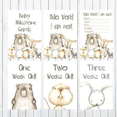 Baby Milestone Cards, 4x6 Photo Prop, 26 cards, Woodland Animals