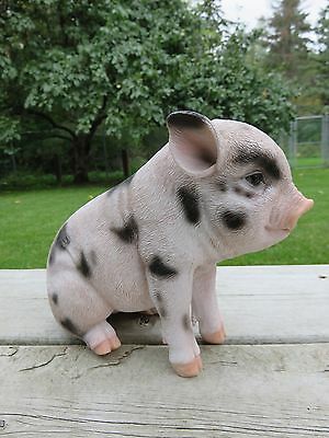PIG 6 in.H X 7.5 in.L. Spotted  SITTING FIGURINE animal farm piglet resin  new