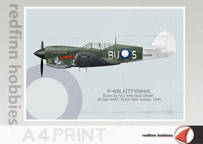 Warhead Illustrated P-40N Kittyhawk 80 Sq RAAF Thumper A4 Aircraft Print