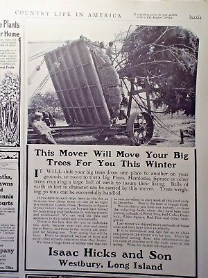 1910 Issac Hicks LARGE TREE Moving service Ad Country life in America magazine