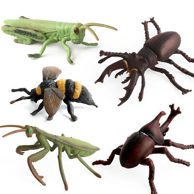 1Pcs Simulation Insects and Bugs Toy Plastic Animal Toys for Collection aw3q