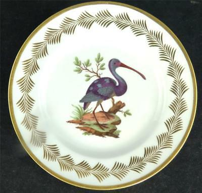 ANTIQUE EARLY 19TH CENTURY FRENCH NAST PORCELAIN ORNITHOLOGICAL PLATE a