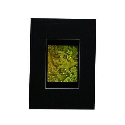 3D T-Rex Dinosaur Hologram Picture (MATTED), Photopolymer Type Film