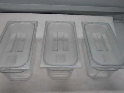 Lot of 3 Carlisle Food Prep Table Plastic Pans, 3rd Size, 5 1/2 quart, with Lids