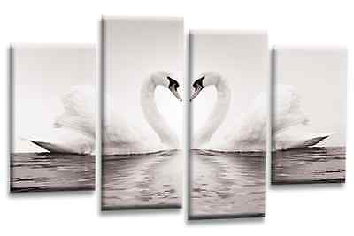 Love Heart Wall Art Picture Swans Grey Black White Grey Multi Canvas Panel
