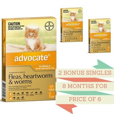 Advocate Flea & Worm Control Cats under 4kg - 6 Pack + 2 BONUS Singles