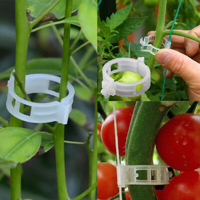 50pcs Garden Plant Clip Ring Great For Flower Bean Cucumber Support