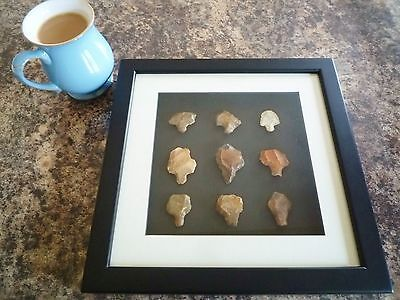 Paleolithic Arrowheads in 3D Picture Frame, Authentic Artifacts 70,000BC (Q002)