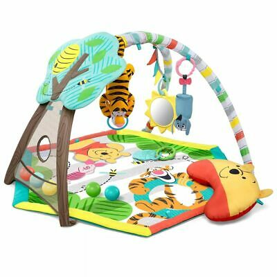 Disney Activity Gym Winnie the Pooh Baby Toddler Play Mat Canopy Carpet K10996