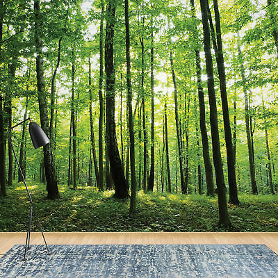 Wall Mural Wallpaper Forest Trees