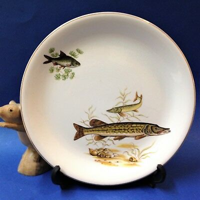 "Vintage Early 60s - British Anchor, Staffordshire  - Fish Plate 9"" (23cm) - Pike"