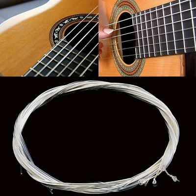Classical Nylon Clear & Silver Guitar Strings Set of 6 Medium Gauge Replacement♢