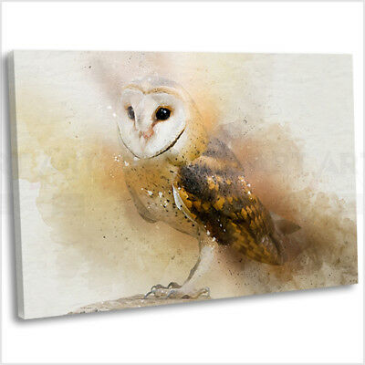 Barn Owl Abstract Watercolour Canvas Print Framed Animal Wall Art Picture