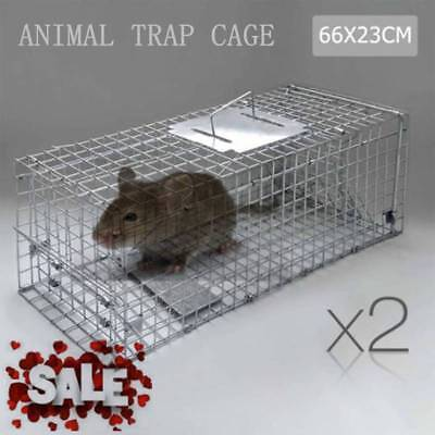 2X Humane Animal Mouse Trap Cage 66 x 23 x 25cm Silver