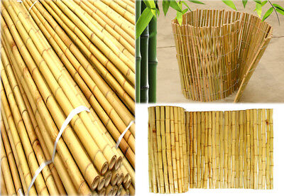 Bamboo Plant Supports Canes Strong Thick Quality Garden Sticks 4ft Foot //x80 PCS