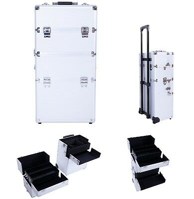 Professional Rolling Makeup Cosmetic Case Beauty Artist Organizer Trolley Box