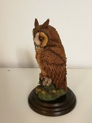 Country Artists for the discerning  Long-Eared Owl