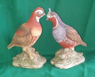 Exquisite Pair Vintage Bob White Quail Figurine Napcoware Limited Edition w/Tags