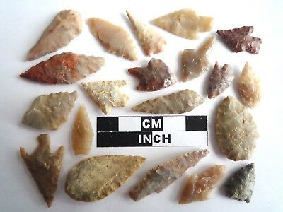 20 x Neolithic Arrowheads - Genuine Saharan Flint Artifacts - 4000BC (2025)