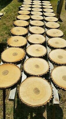 """10 Pc 10"""" to 12 inch rustic coaster set"""
